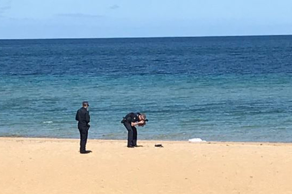 Article image for Body found on beach in Melbourne's south-east