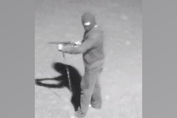 Article image for Police offer $350,000 following 'vicious' armed robbery in Sunshine