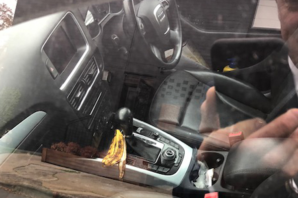Article image for Tom Elliott spotted this in a car in the inner-north and found it very unsettling