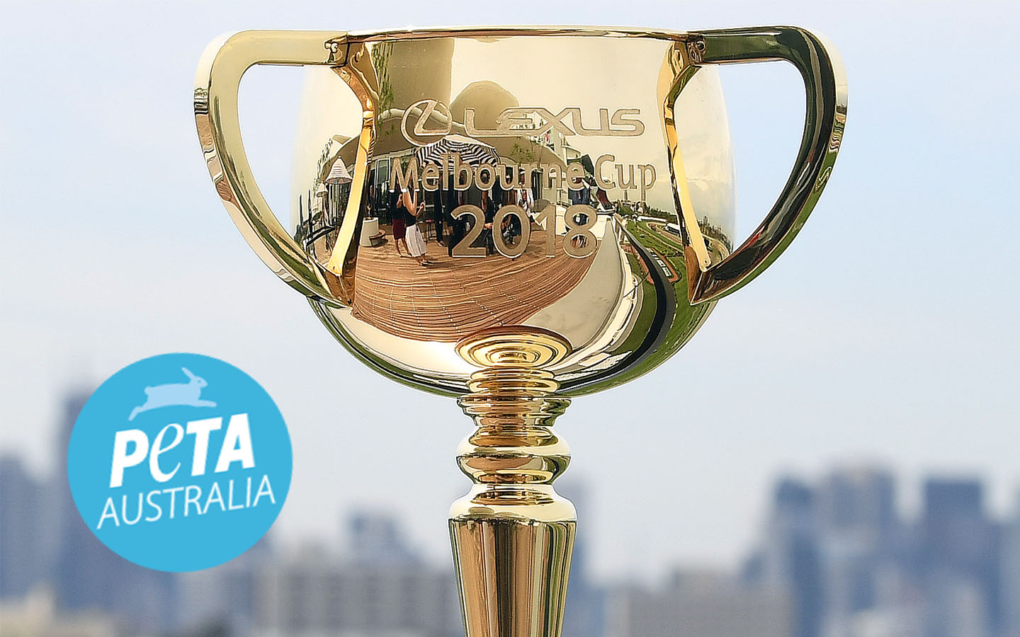 """Article image for Animal rights group calls for cancellation of """"inherently cruel"""" Melbourne Cup holiday"""