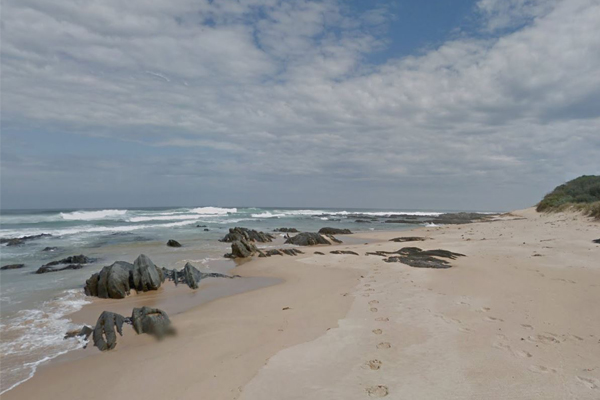 Article image for Experts fear none of the 28 whales stranded on Gippsland beach will survive