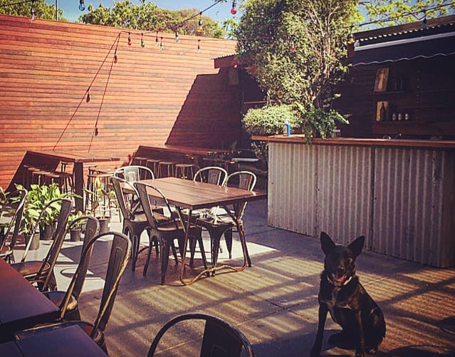 Article image for Pub of the Week: Tony Leonard reviews the Park Hotel in Abbotsford