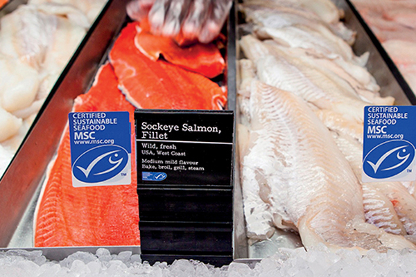 Article image for Sustainable seafood: What is it and how do we know if we're buying it?