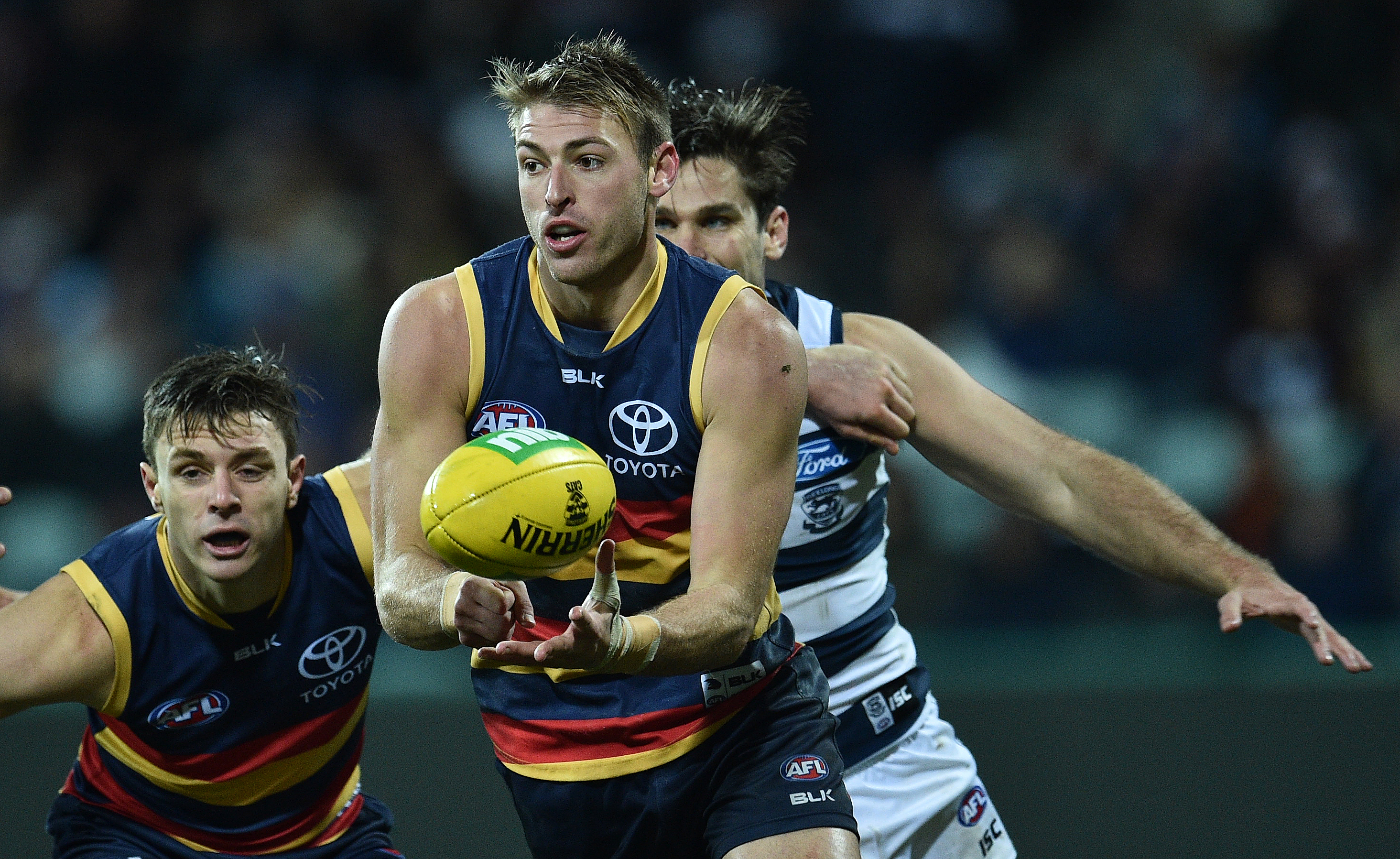 Article image for Adelaide defender set for knee surgery