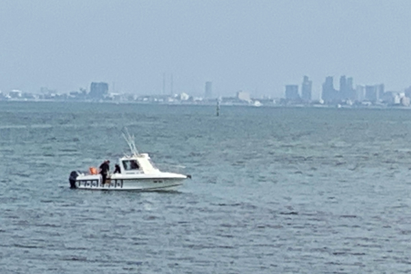 Article image for Body found floating at Brighton beach