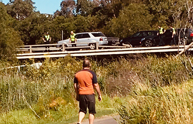 Article image for Car veers off Princes Freeway and into creek
