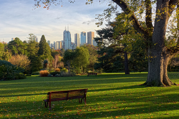 Article image for Wendy Hargreaves: 5 of the best picnic spots