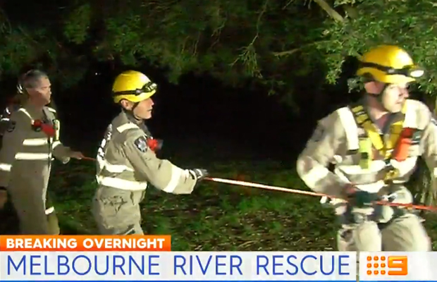 Article image for Couple rescued after chasing dogs into Heidelberg river