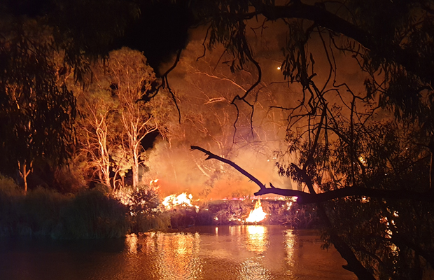 Article image for Fireworks spark dangerous grass fire on Murray river — spectacular images