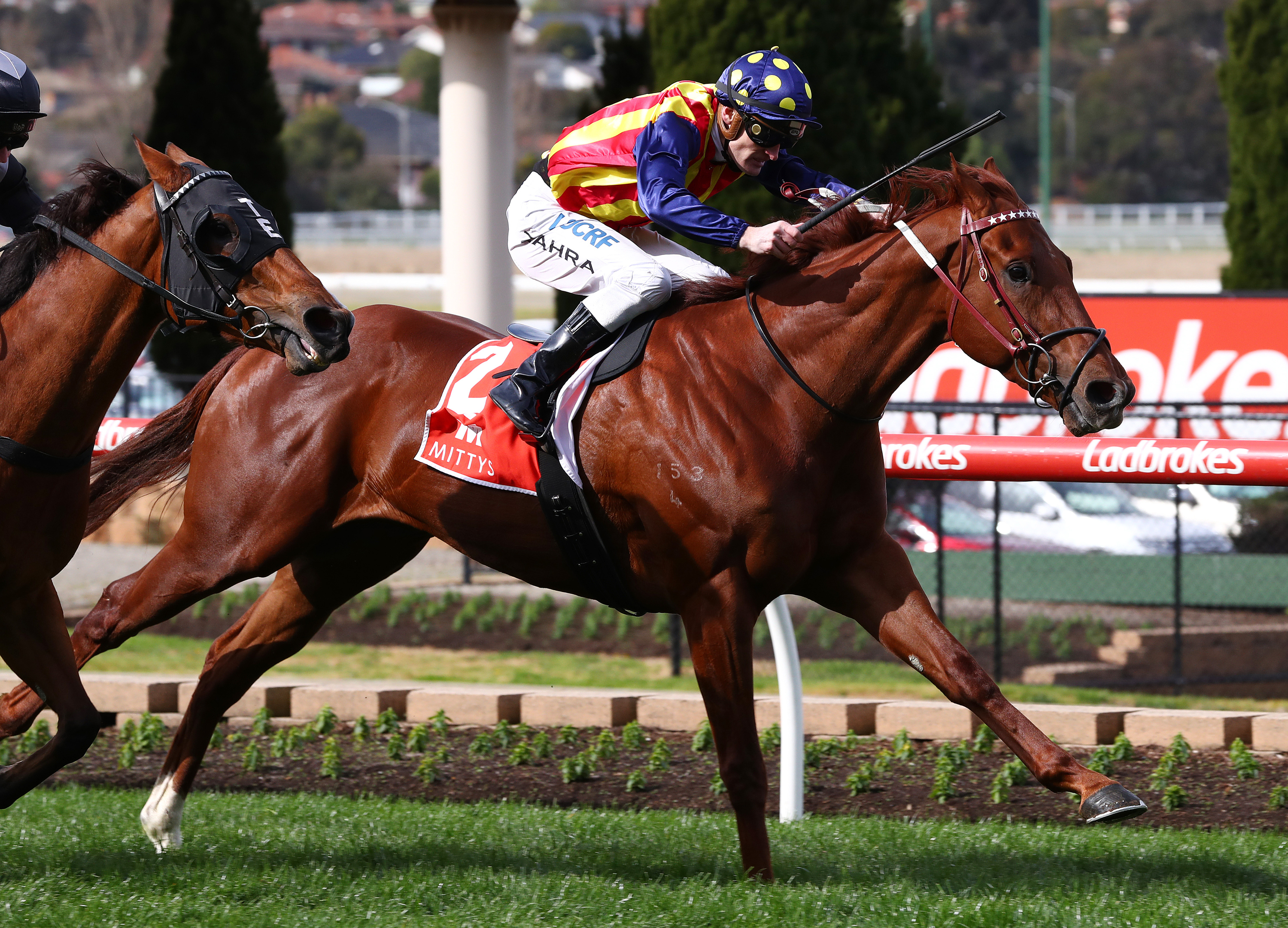 """Article image for Owners of star Darren Weir horse """"considered taking it to court"""""""