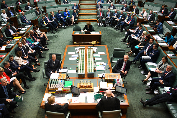 Article image for 'They've just stopped functioning': Labor hits out at 'bizarre' day in politics