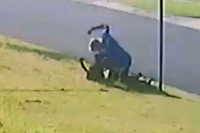 Article image for Shocking vision emerges of man bashing dog
