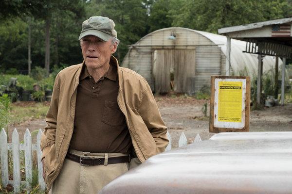 Leigh Paatsch reviews 'The Mule'