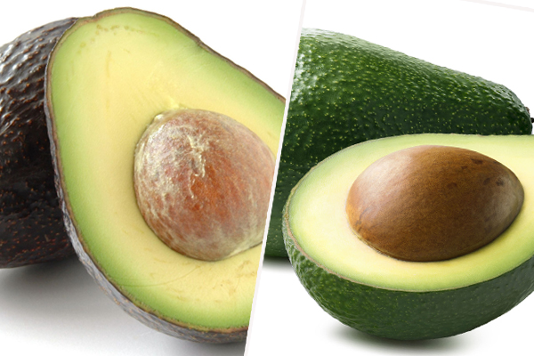 Article image for Hass avocado season is over so get ready for the disappointment that is Shepard avo season
