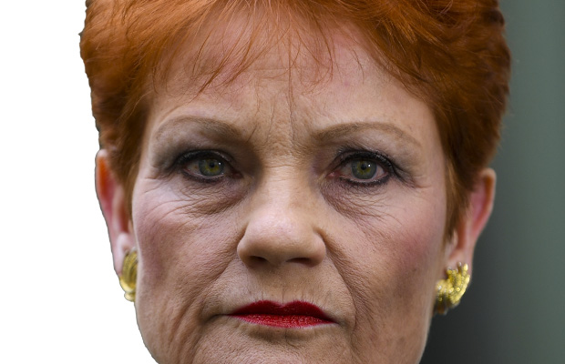 Article image for Pauline Hanson has taken politics to a new low: Alannah and Madeline's dad