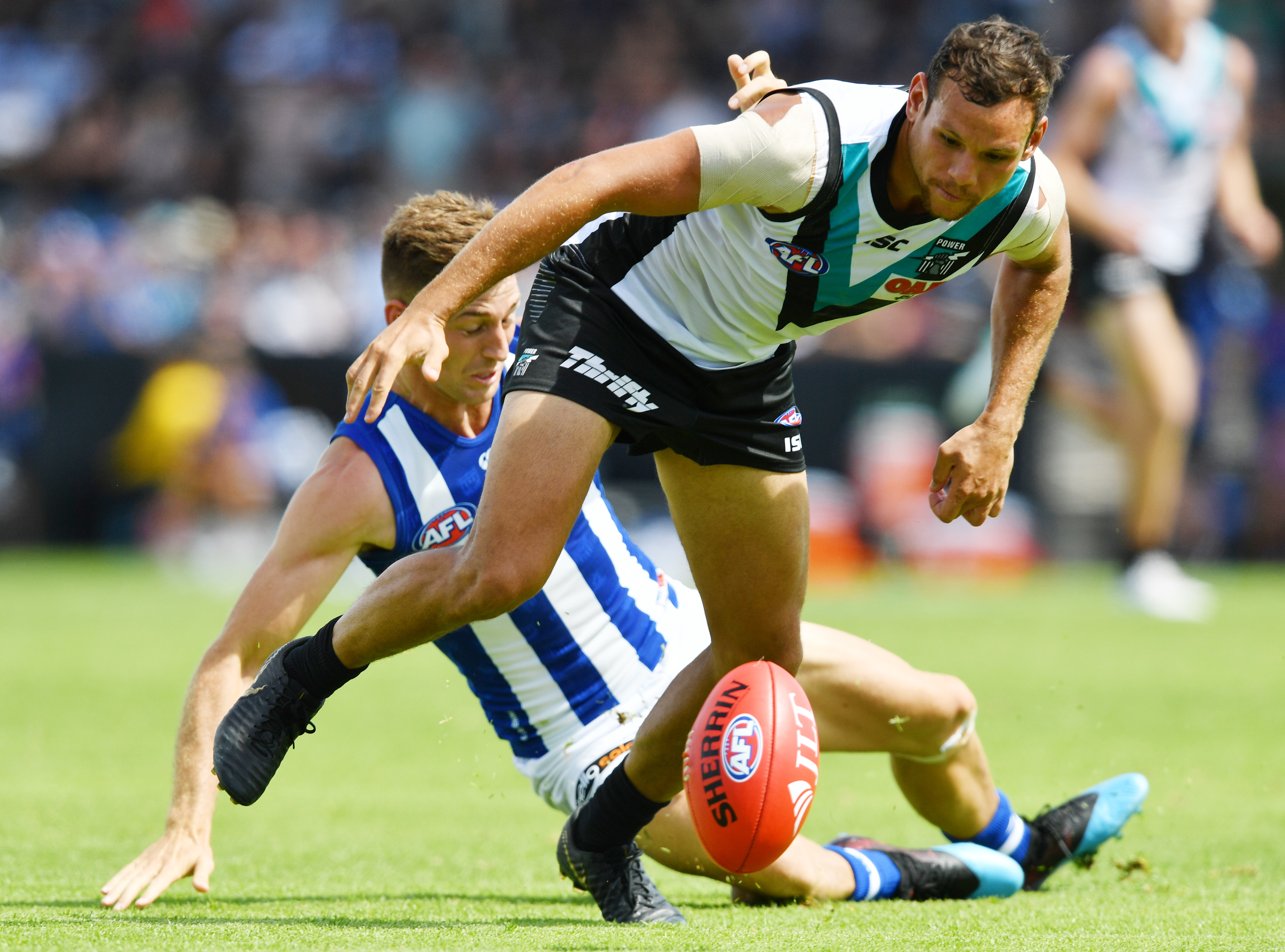Article image for Power defeat the Roos at the Adelaide Oval