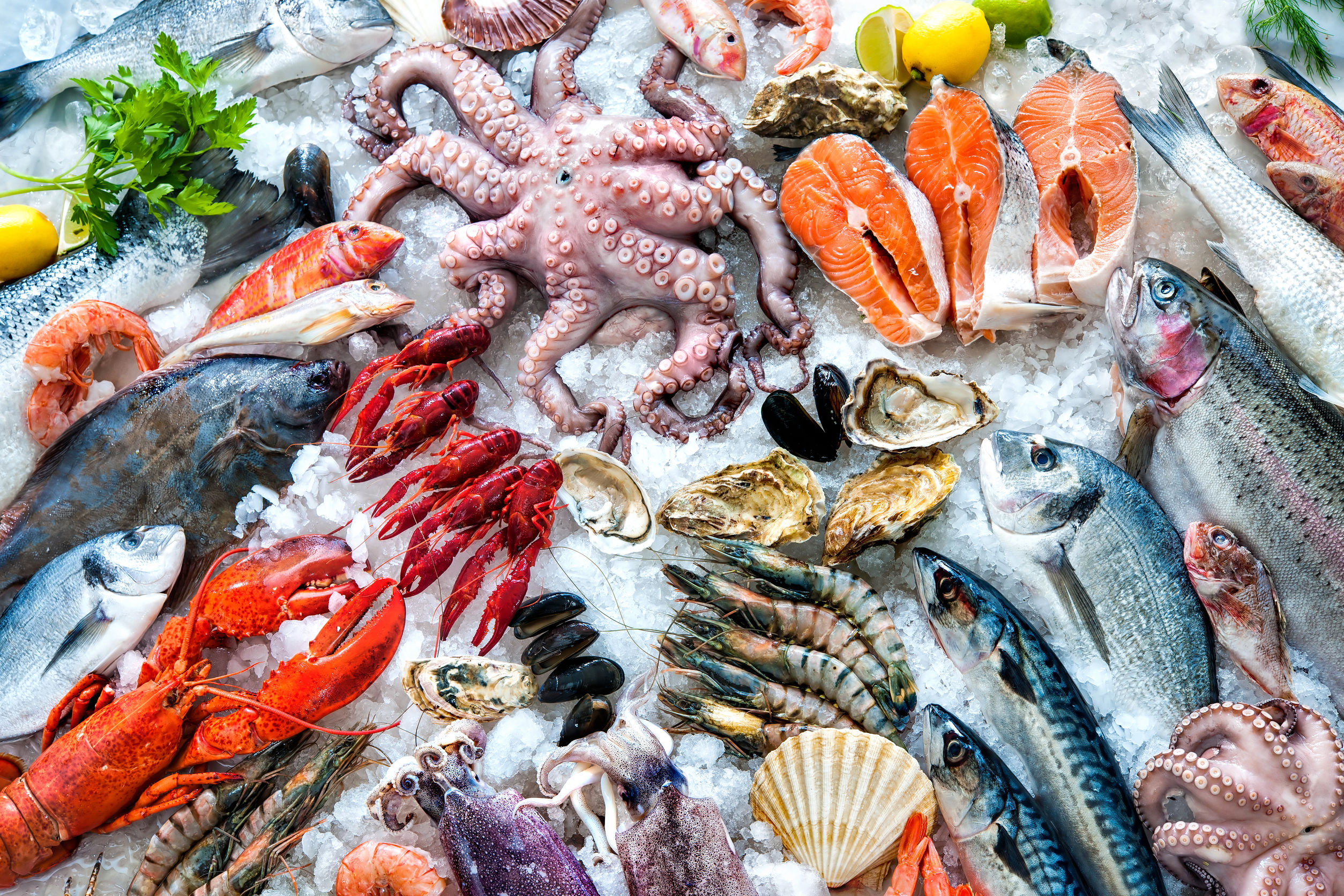 Article image for Wendy Hargreaves: Where to buy fish in Melbourne this Easter