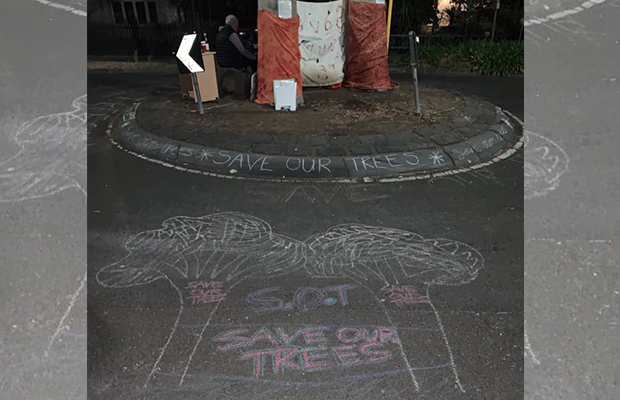 Article image for Teens scale gum trees at Alphington intersection to stop them being cut down
