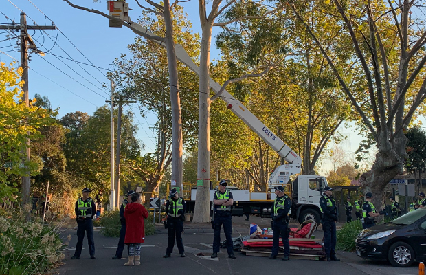Article image for Police swarm on Alphington roundabout as gum tree protest heats up