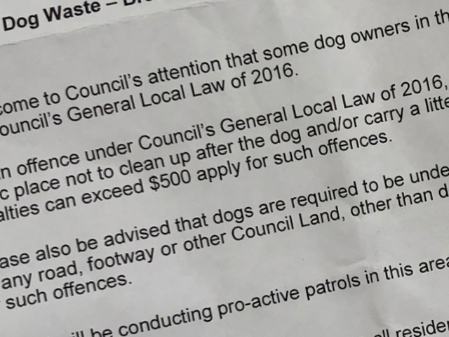 Article image for City of Yarra Mayor promises dog poo crackdown
