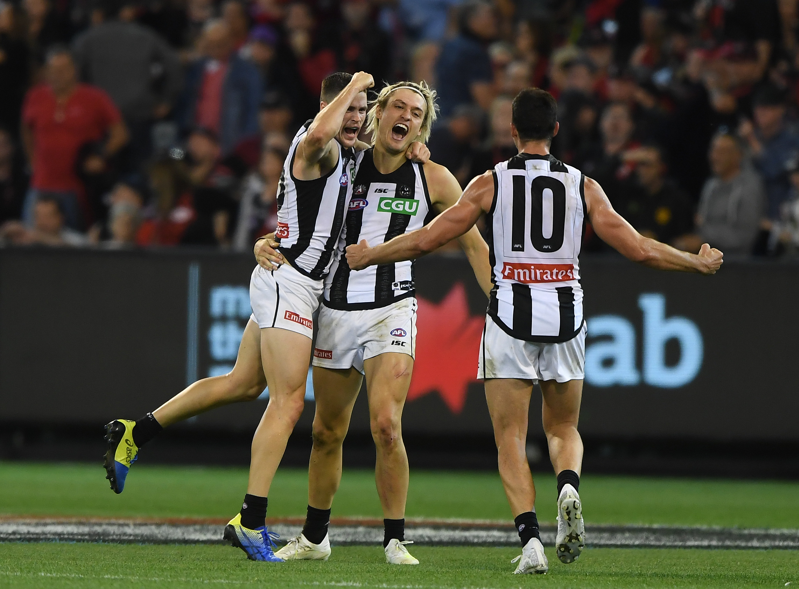 Buckley's high praise for 'grounded' Darcy Moore