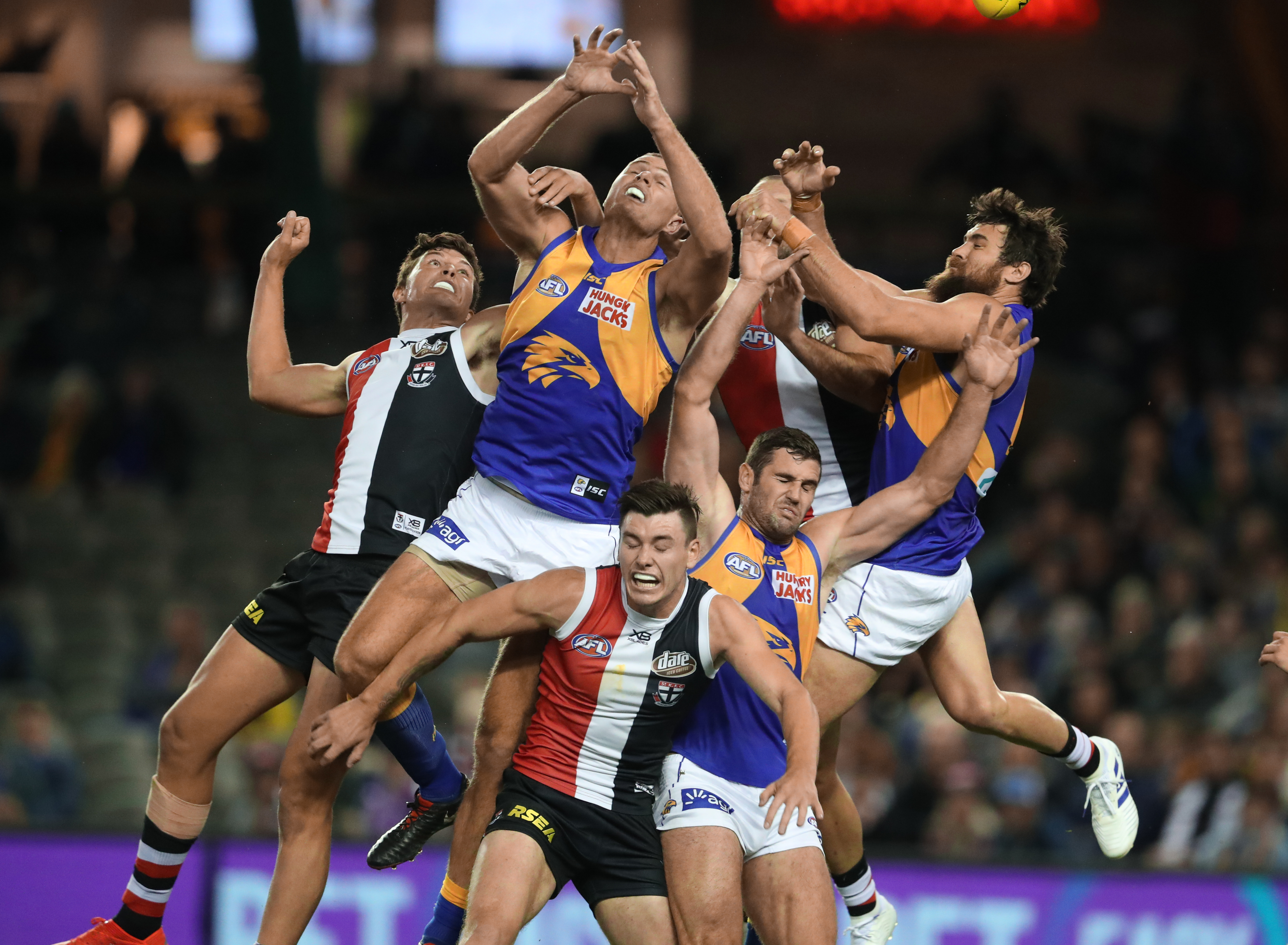 Article image for St Kilda fall again as the Eagles prevail