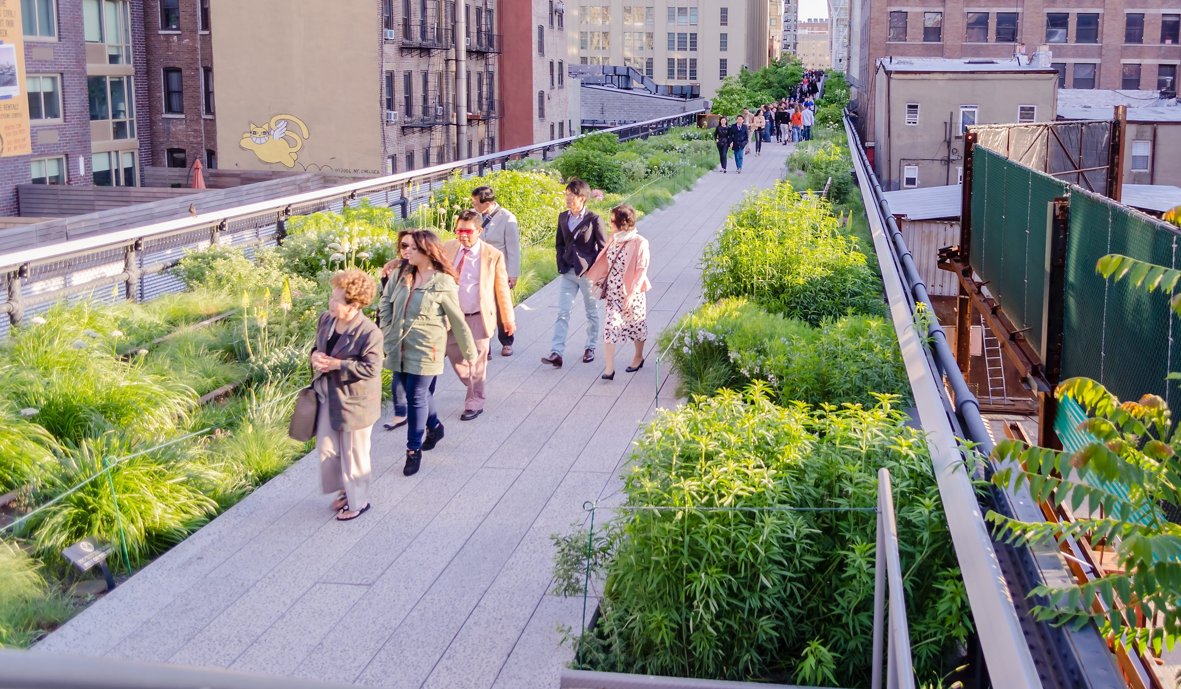 Article image for Concrete jungle: Green roof push to transform Melbourne's skyline