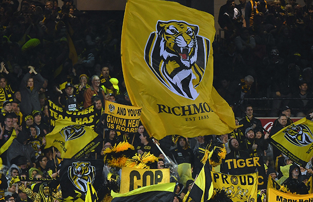 Article image for Three-game ban for Richmond fan puts footy fans on notice