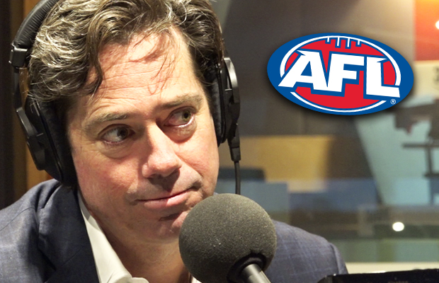 Article image for AFL boss hits back at suggestions of 'fan crackdown'