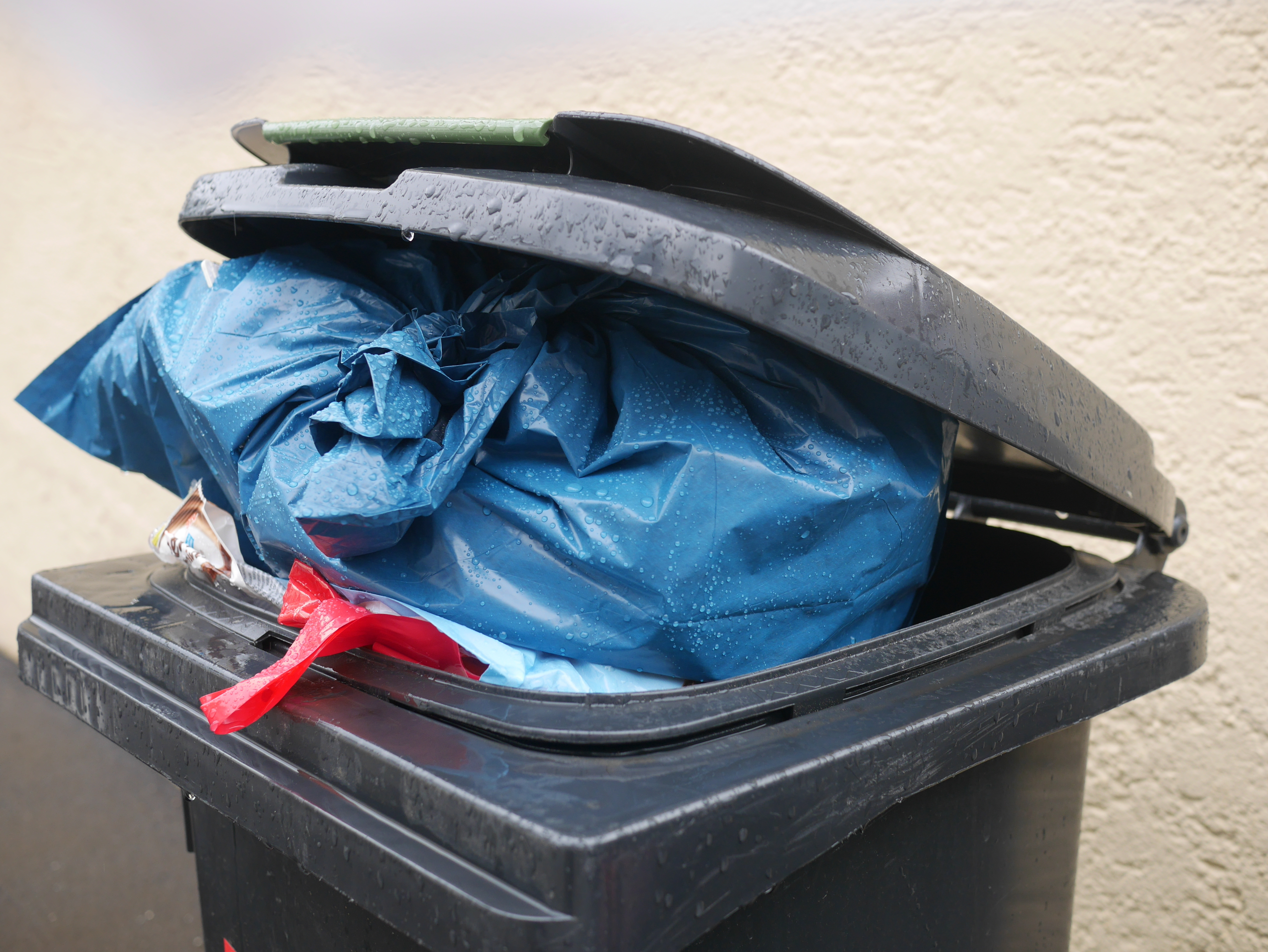 Article image for Melbourne council's plan to reduce weekly bin collection to fortnightly