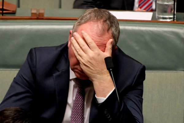 Article image for Why Barnaby Joyce told us he's 'struggling' on his $211k salary
