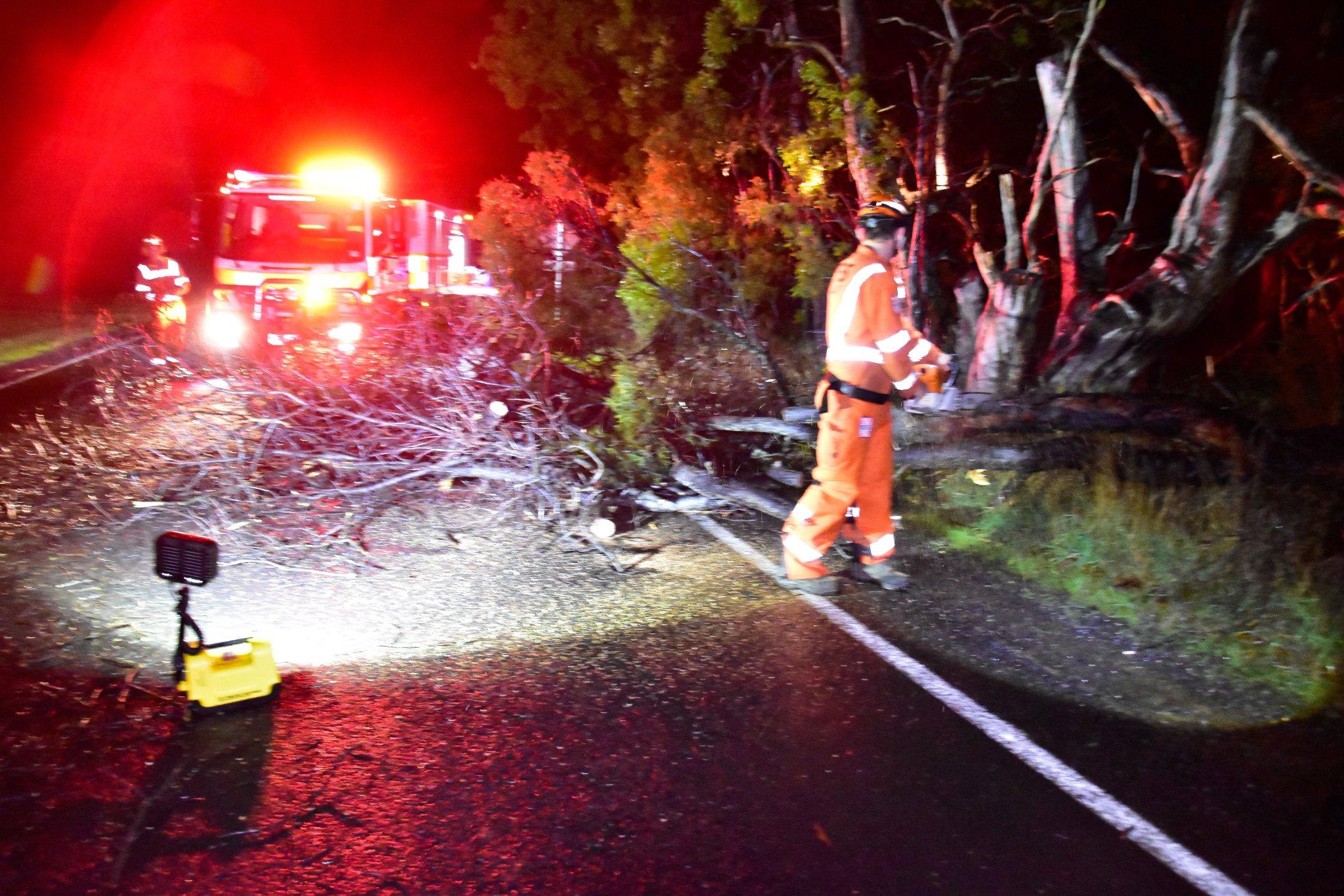 Article image for Wild winds lash Victoria, more to come