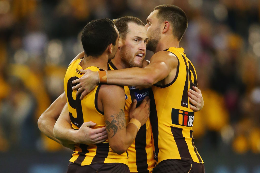 Article image for Hawthorn 'really mindful' of keeping experience on its list