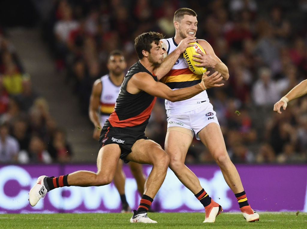Article image for Essendon STORM home with a win over Adelaide