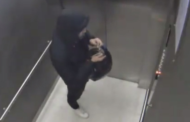 Article image for $200K handbag heist: Images released in hunt for thief with expensive taste