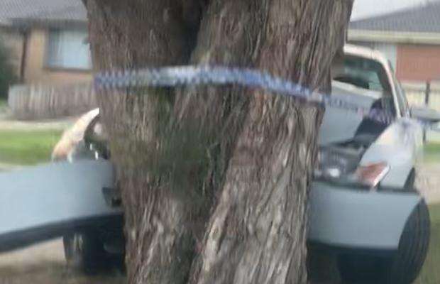 Article image for Multiple arrests made after dramatic Dandenong smash