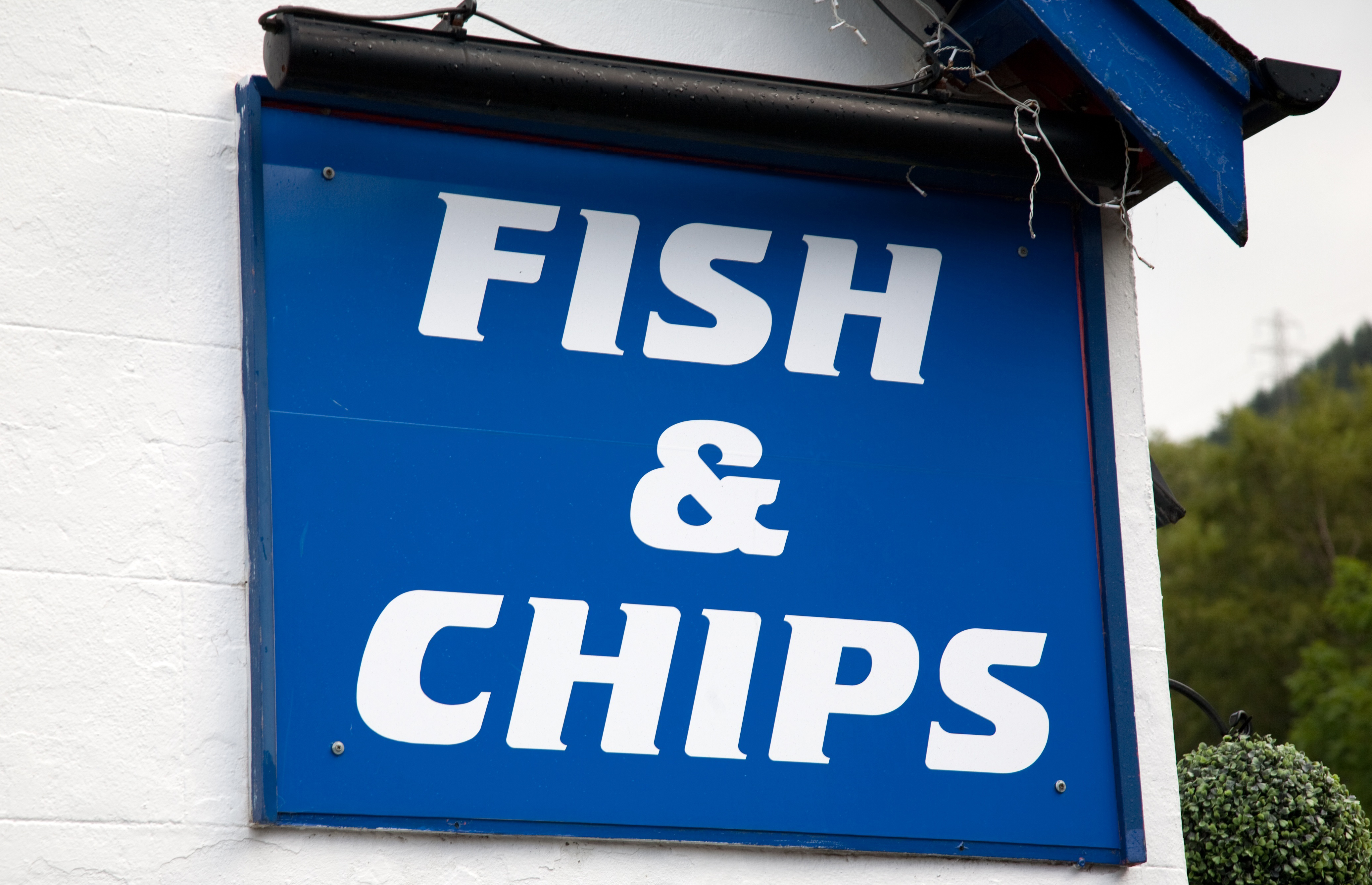 Article image for Fish and chip shop thief caught hiding in frozen fish display cabinet