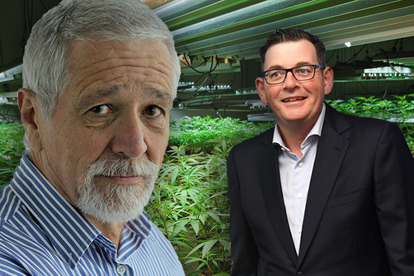 Article image for 'Where's the dope, Daniel?': Neil Mitchell wants to know what's happened to government cannabis crops