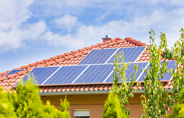 Article image for 'It's a mess': Protesters call on state government to review solar panel rebate scheme