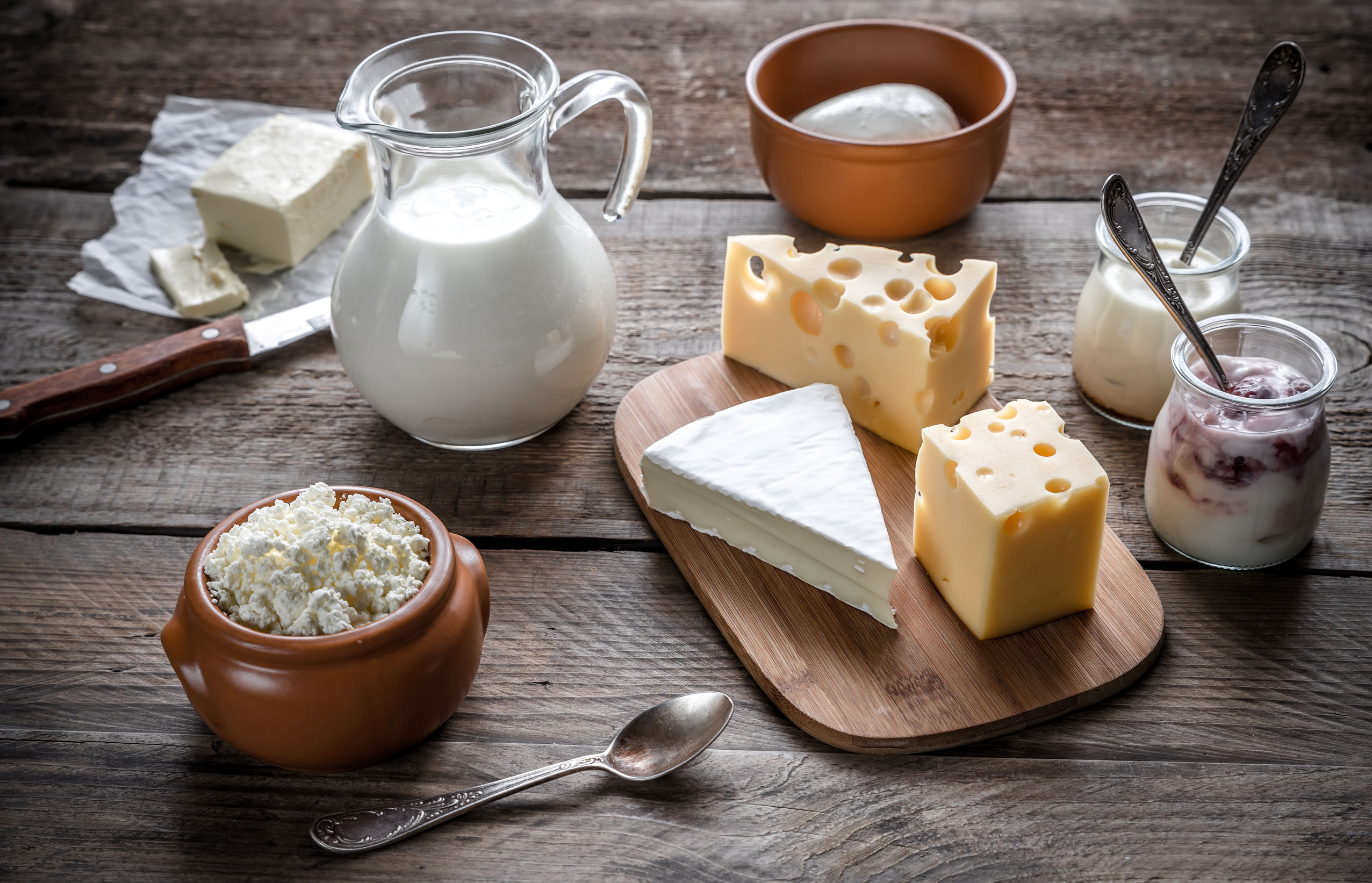Scientists investigating dairy's influence on mental and gut health