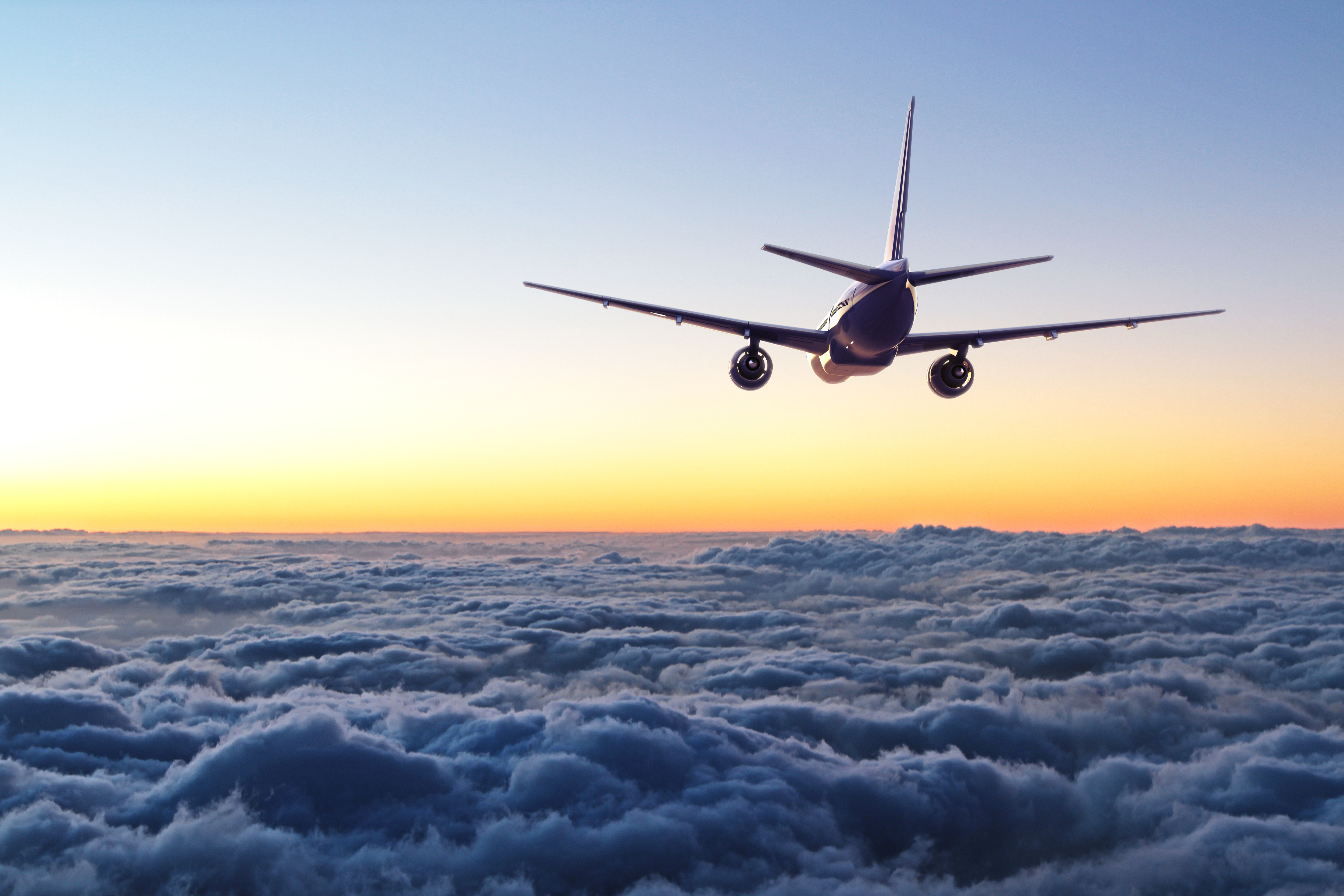 Article image for Pressure grows on aviation industry from climate activists