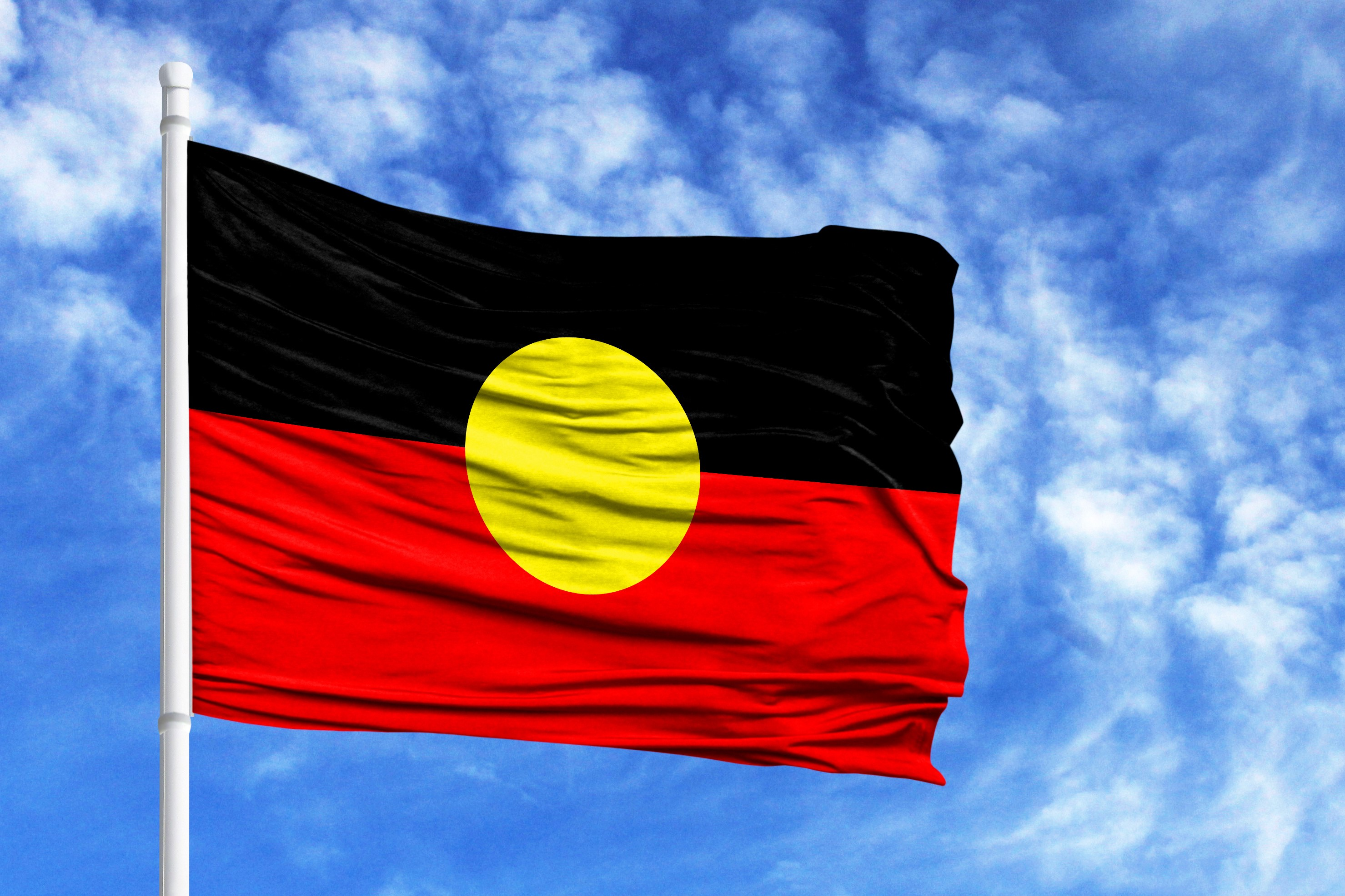 Article image for 'We thought the flag belonged to the people': Calls for government to buy Aboriginal flag copyright