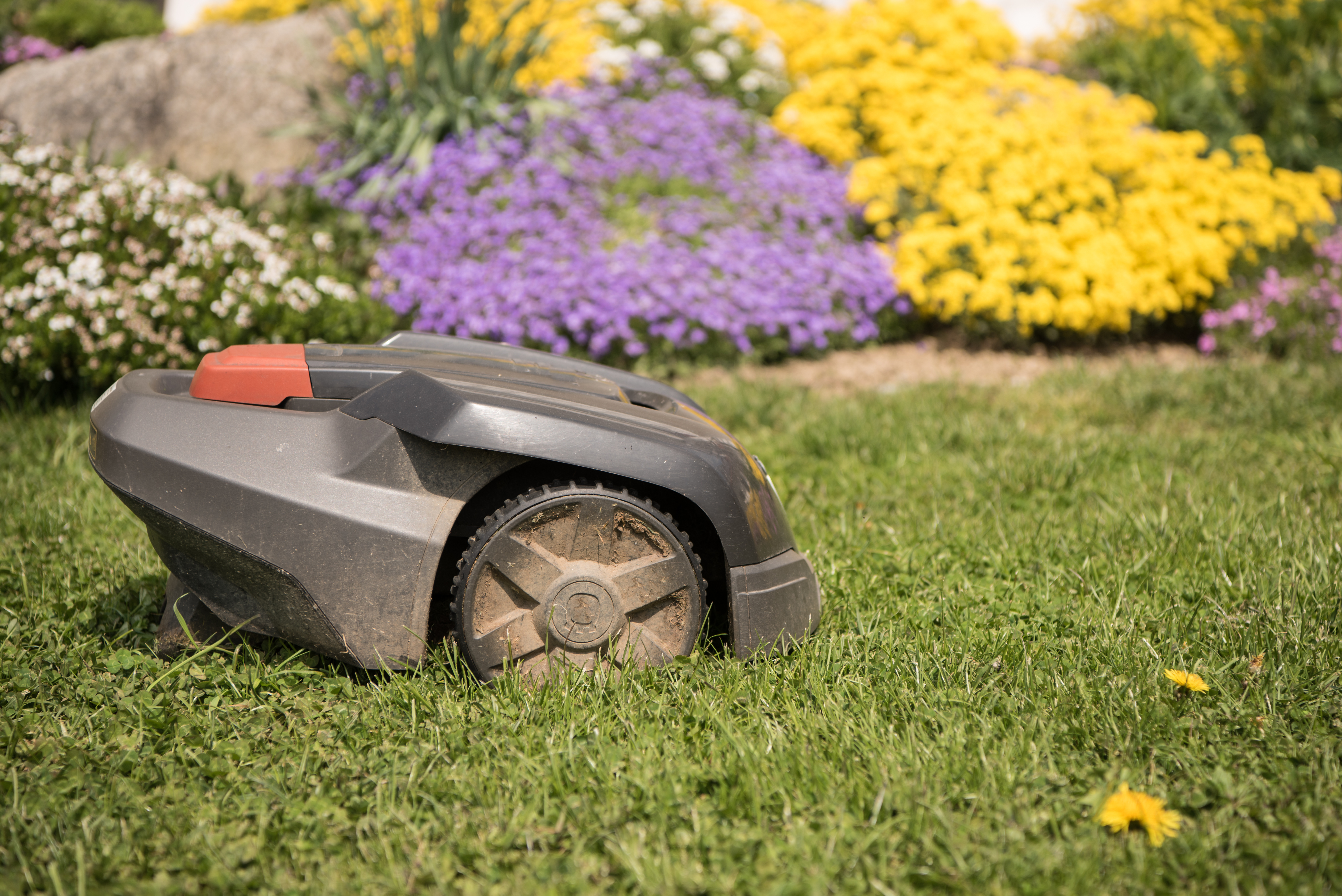 Lawnmowers next victim in age of automation