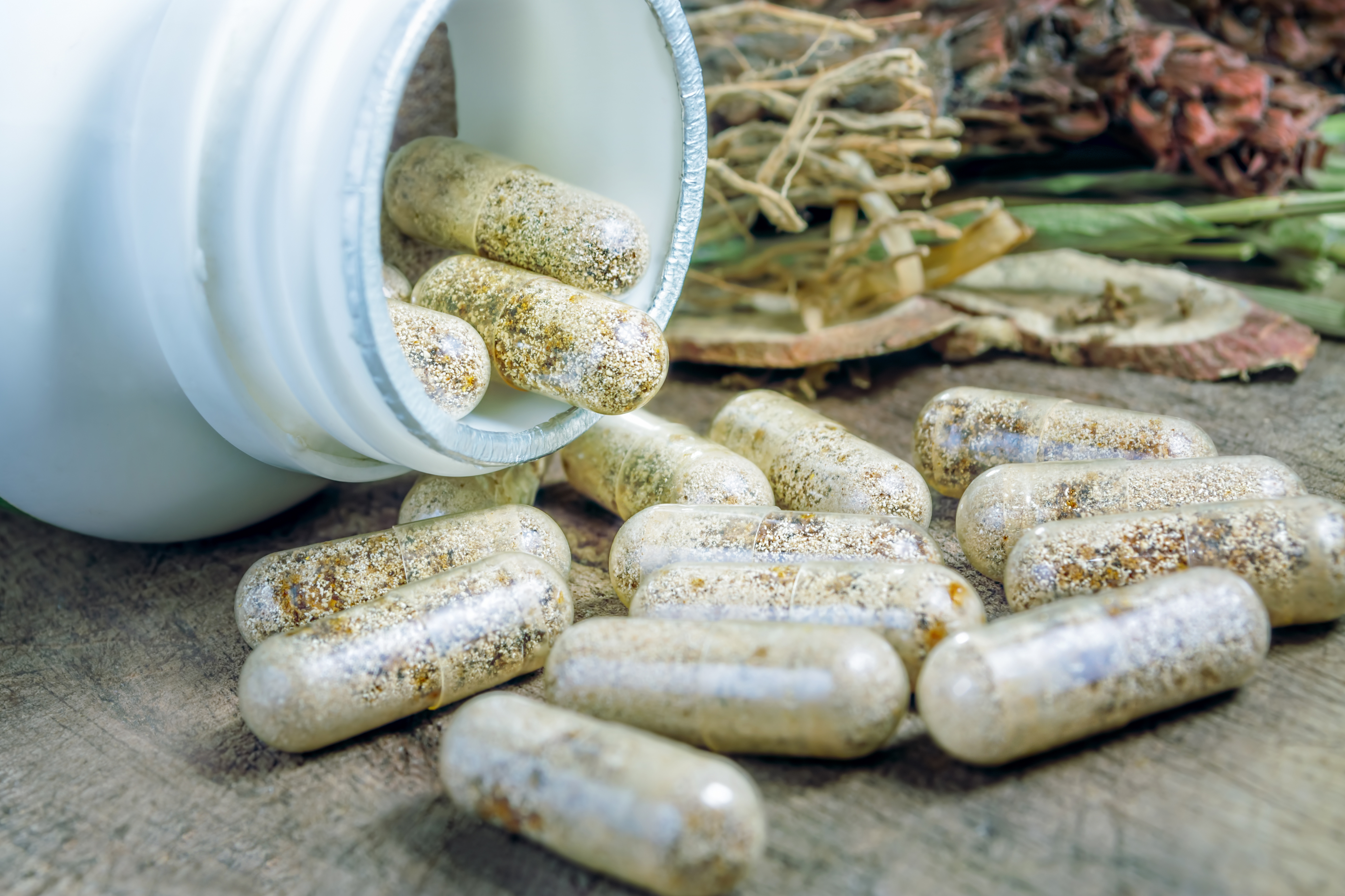 Snow leopard, dog, heavy metals: Two in three natural supplements contain something they shouldn't