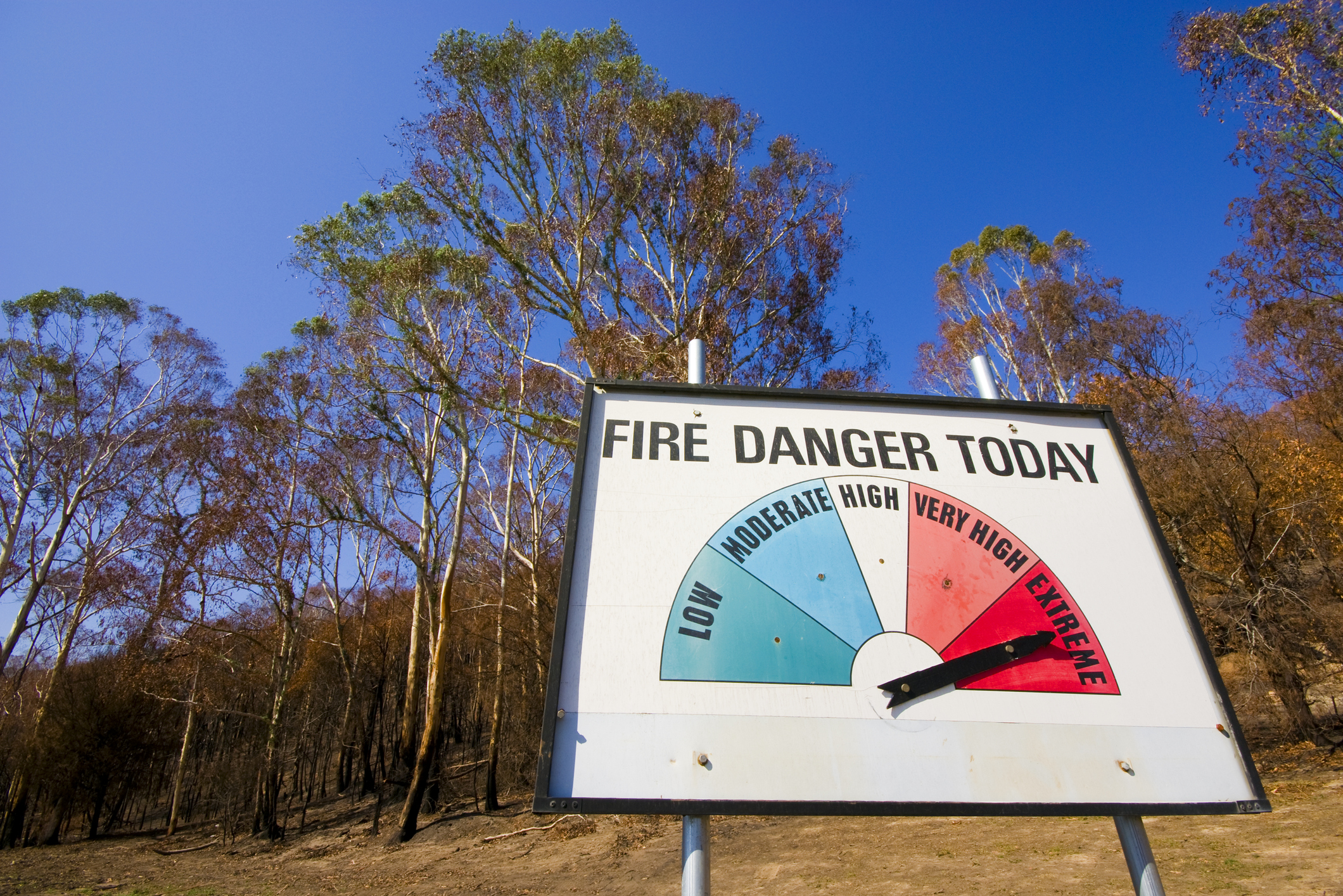 Article image for 'Extreme' fire risk in the area affected by Black Saturday kept secret
