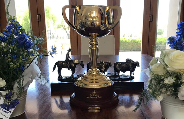Article image for Update: The 2017 Melbourne Cup has been stolen