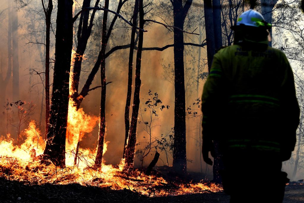 Article image for 'There's no let up in sight': NSW faces unprecedented bushfire danger