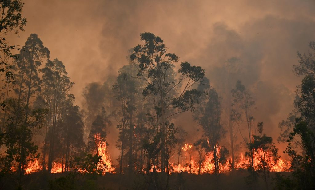 Article image for 'Catastrophic' bushfire season: NSW declares state of emergency, Victorians warned to be alert