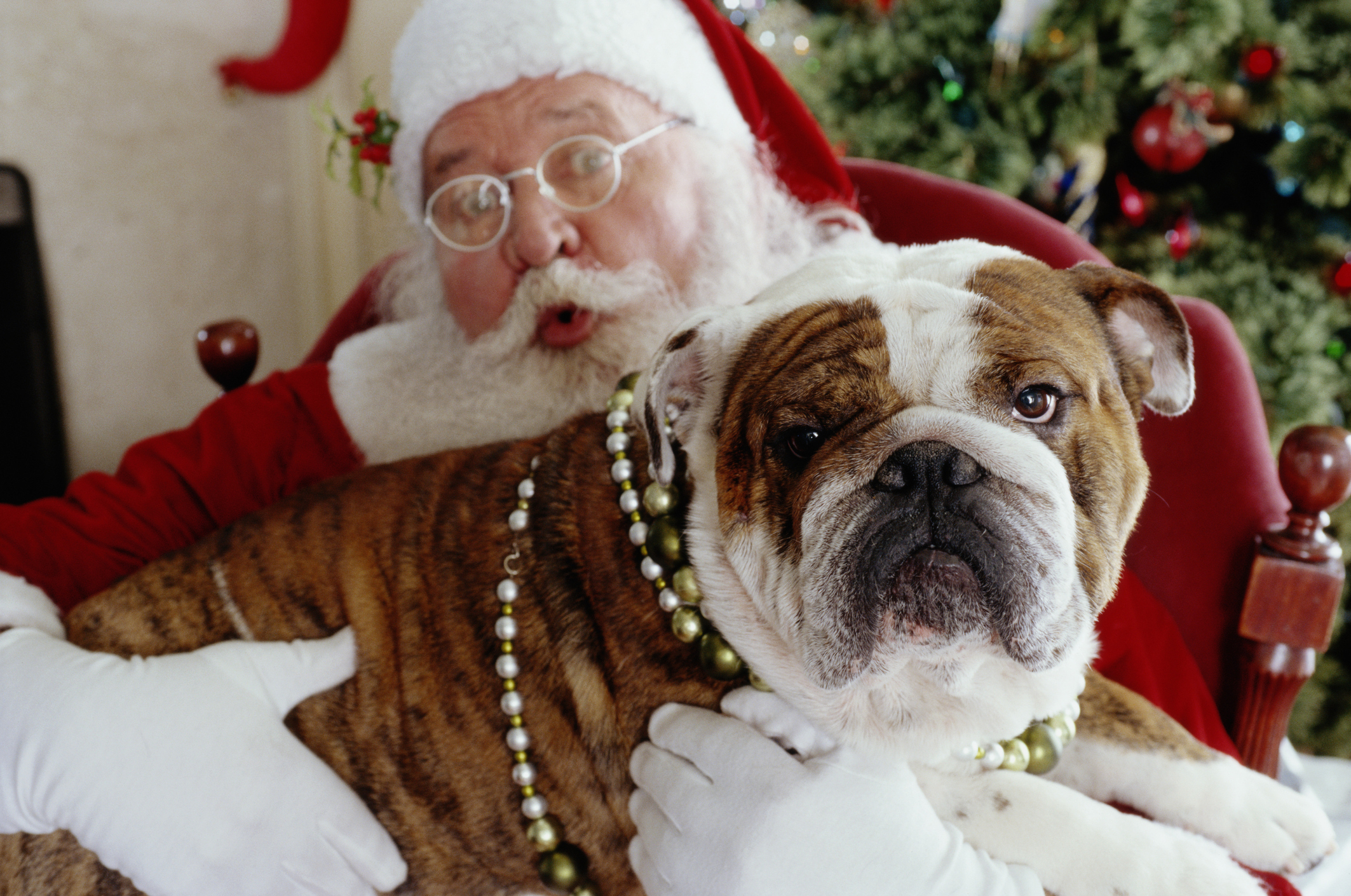 Article image for Westfield Doncaster increases Santa hours due to increasing demand