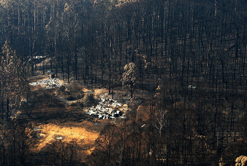 'You can't rebuild': Urban planner floats proposal to stop building homes in bushfire prone areas